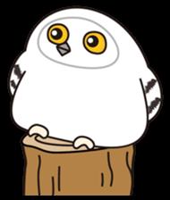 snowy owl sticker #2327109