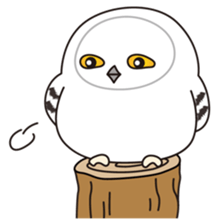 snowy owl sticker #2327110