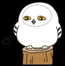 snowy owl sticker #2327110
