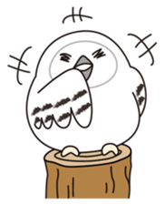 snowy owl sticker #2327113