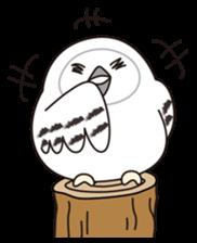 snowy owl sticker #2327113