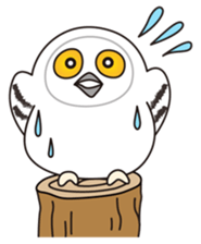 snowy owl sticker #2327116