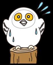 snowy owl sticker #2327116