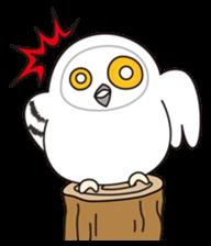 snowy owl sticker #2327117