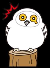 snowy owl sticker #2327118