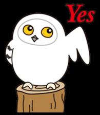 snowy owl sticker #2327128