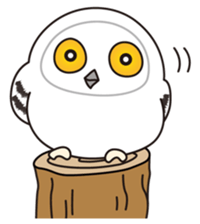 snowy owl sticker #2327132