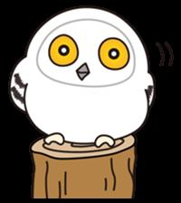 snowy owl sticker #2327132
