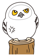snowy owl sticker #2327134