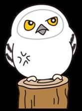 snowy owl sticker #2327134