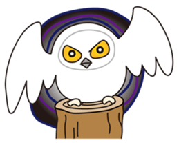 snowy owl sticker #2327135