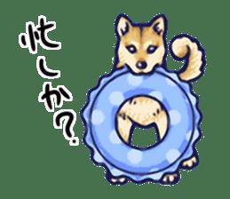 Kawaii Animals (Cute Animals of Kyushu) sticker #2331983