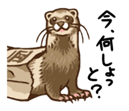 Kawaii Animals (Cute Animals of Kyushu) sticker #2331984