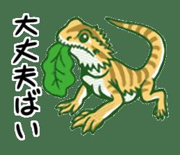Kawaii Animals (Cute Animals of Kyushu) sticker #2331992