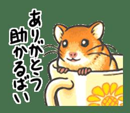Kawaii Animals (Cute Animals of Kyushu) sticker #2332007