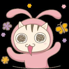 Cat with rabbit suit