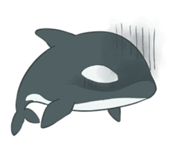 Orca and Dolphin sticker #2409955