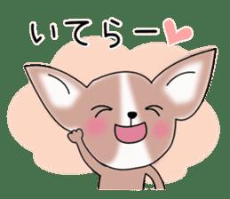 Talkative Smooth Coat Chihuahua PART2 sticker #2416865