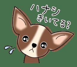 Talkative Smooth Coat Chihuahua PART2 sticker #2416874