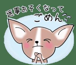 Talkative Smooth Coat Chihuahua PART2 sticker #2416878