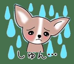 Talkative Smooth Coat Chihuahua PART2 sticker #2416884