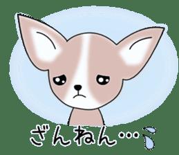Talkative Smooth Coat Chihuahua PART2 sticker #2416889