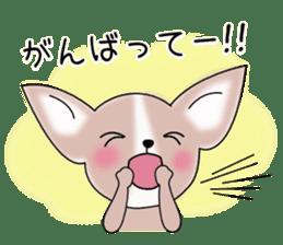 Talkative Smooth Coat Chihuahua PART2 sticker #2416894