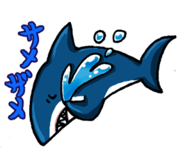 Daily Sharks sticker #2432864