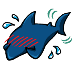Daily Sharks sticker #2432870