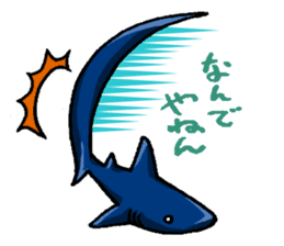 Daily Sharks sticker #2432871