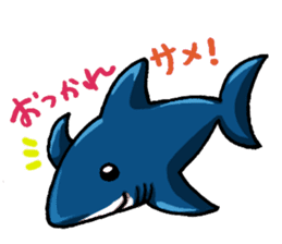 Daily Sharks sticker #2432879