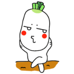 A red cheek Japanese radish