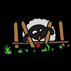 Shumona - the funny lamb