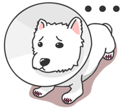 West Highland White Terrier.part 2 sticker #2526396