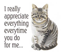 Cats, nothing special, in English sticker #2560370