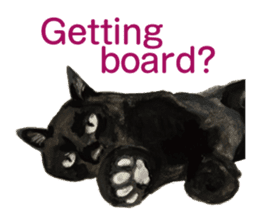 Cats, nothing special, in English sticker #2560374