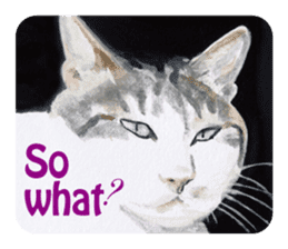 Cats, nothing special, in English sticker #2560385
