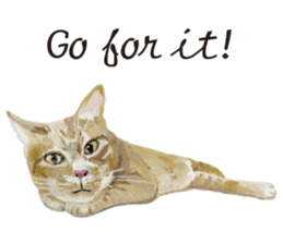 Cats, nothing special, in English sticker #2560386
