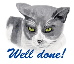 Cats, nothing special, in English sticker #2560388