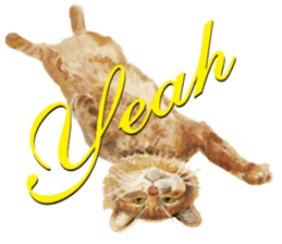 Cats, nothing special, in English sticker #2560392