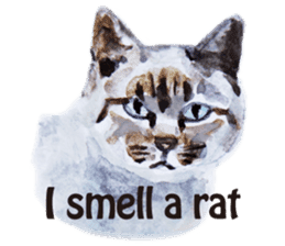 Cats, nothing special, in English sticker #2560398
