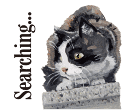 Cats, nothing special, in English sticker #2560401