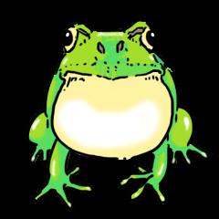 I love frog!
