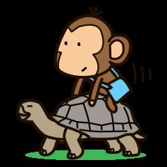 Funny monkey 2