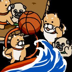 Proper Use Sport (Shiba&Pug)