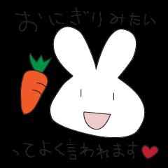 I'm Rabbit !