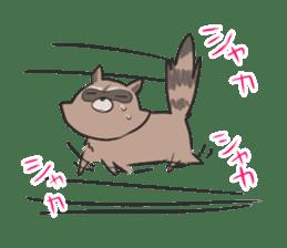 common raccoon sticker #2604885