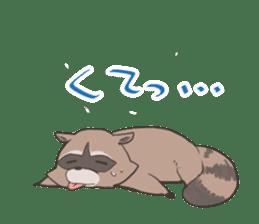 common raccoon sticker #2604893