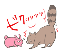 common raccoon sticker #2604895