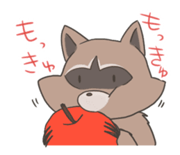 common raccoon sticker #2604904